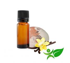 AVOINE Semence vrac et poudre - Aroma Centre