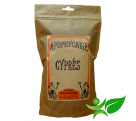 CYPRES, Cône poudre (Cupressus sempervirens) - Apophycaire