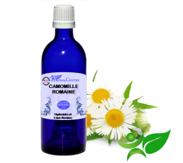 Camomille romaine, Hydrolat (Anthemis nobilis) - Aroma Centre