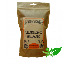 GINSENG BLANC, Racine poudre (Panax ginseng) - Apophycaire
