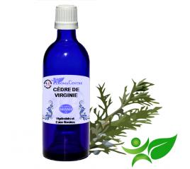 Cèdre de Virginie, Hydrolat (Juniperus virginiana) - Aroma Centre