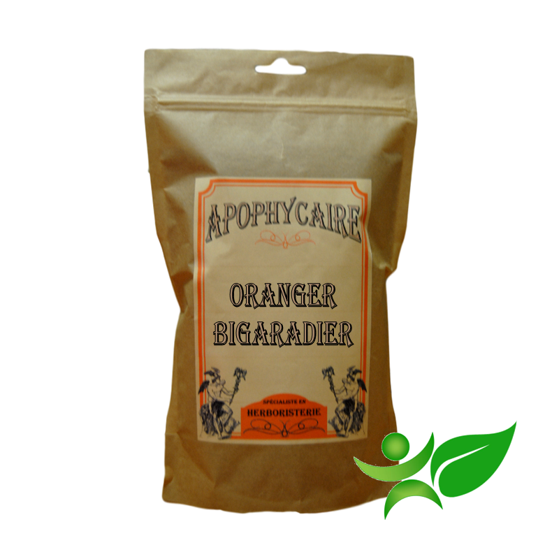 FLEUR ORANGER, Bouton (Citrus aurantium var.amara) - Apophycaire