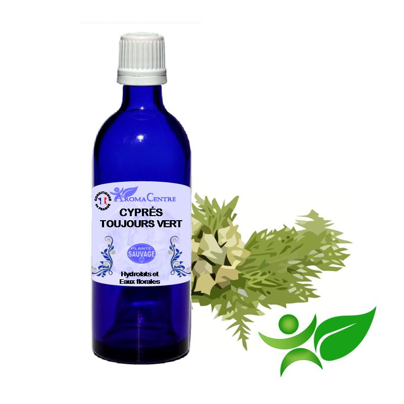 Cyprès toujours vert, Hydrolat (Cupressus sempervirens) - Aroma Centre