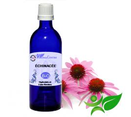 Echinacée BiO, Hydrolat (Echinacea purpurea) - Aroma Centre