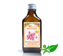 Pétales de Rose BiO, Macérât huileux (Rosa damascena / Prunus amygdalus) - Aroma Centre
