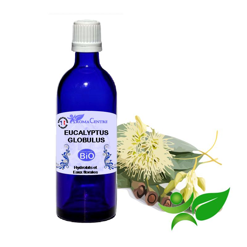 Eucalyptus globulus BiO, Hydrolat (Eucalyptus globulus) - Aroma Centre