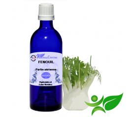Fenouil, Hydrolat (Foeniculum vulgare) - Aroma Centre