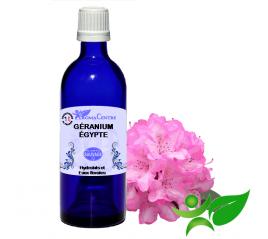Géranium Egypte, Hydrolat (Pelargonium asperum) - Aroma Centre