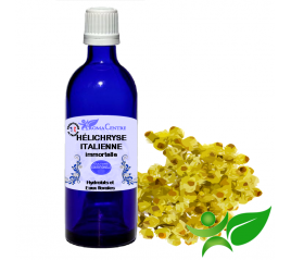 Hélichryse Italienne, Hydrolat (Helichrysum italicum) - Aroma Centre