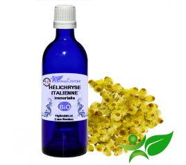Hélichryse Italienne BiO, Hydrolat (Helichrysum italicum)