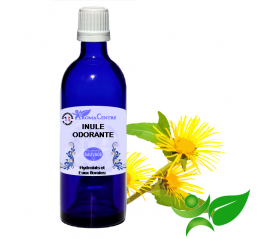 Inule odorante, Hydrolat (Inula graveolens) - Aroma Centre