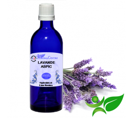 Lavande aspic, Hydrolat (Lavandula latifolia) - Aroma Centre