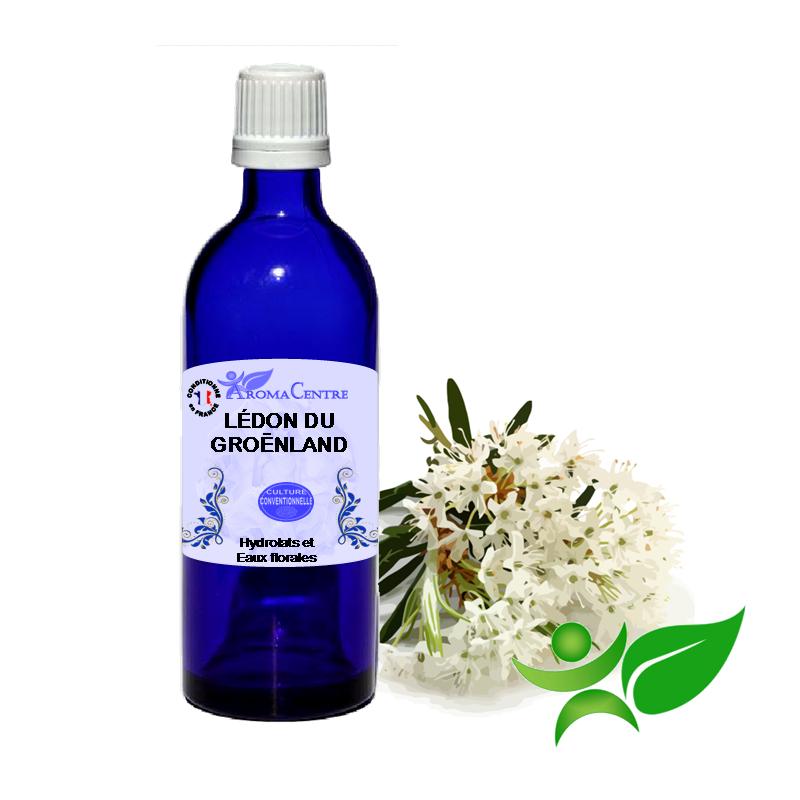 Lédon du Groéndland, Hydrolat (Ledum groenladicum) - Aroma Centre
