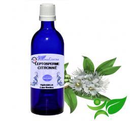 Leptosperme citronné, Hydrolat (Leptospermum citratum) - Aroma Centre