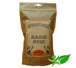 RADIS NOIR, Racine poudre (Raphanus sativus var. niger) - Apophycaire