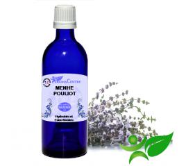 Menthe pouliot, Hydrolat (Mentha pulegium) - Aroma Centre