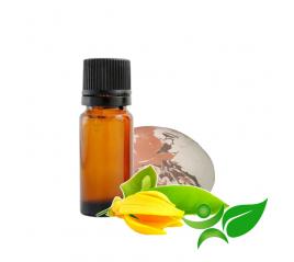Ylang ylang, huile parfumée pour Galet senteur argile Chamotte