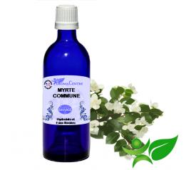 Myrte, Hydrolat (Myrtus communis) - Aroma Centre