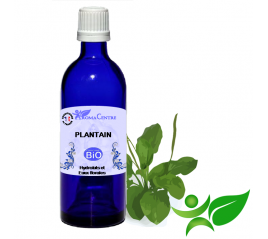 Plantain BiO, Hydrolat (Plantago major) - Aroma Centre