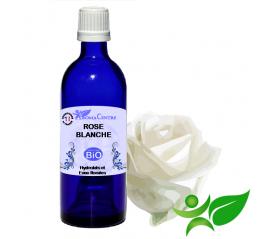 Rose blanche BiO, Hydrolat (Rosa alba) - Aroma Centre