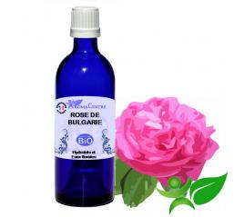 Rose de Bulgarie BiO, Hydrolat (Rosa damascena) - Aroma Centre