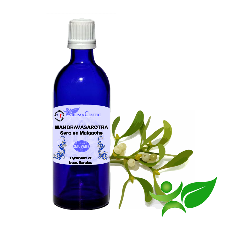 Saro - Mandravasarotra, Hydrolat (Cinnamosma fragrans) - Aroma Centre