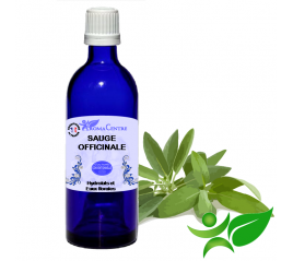 Sauge officinale à grandes feuilles, Hydrolat (Salvia officinalis) - Aroma Centre