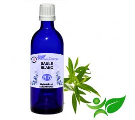 Saule blanc BiO, Hydrolat (Salix alba) - Aroma Centre