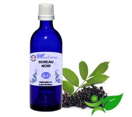 Sureau noir BiO, Hydrolat (Sambucus nigra) - Aroma Centre