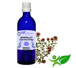 Serpolet - Thym des champs, Hydrolat (Thymus serpyllum) - Aroma Centre