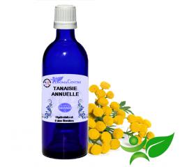 Tanaisie annuelle, Hydrolat (Tanacetum vulgare) - Aroma Centre