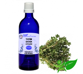 Thym doux à linalol, Hydrolat (Thymus vulgaris ct linalol) - Aroma Centre