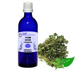 Thym doux à thujanol, Hydrolat (Thymus vulgaris ct thujanol) - Aroma Centre