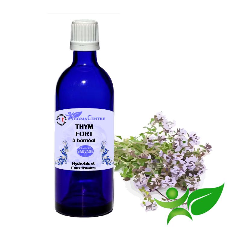 Thym fort à bornéol - Feuille sarriette, Hydrolat (Thymus satureioides) - Aroma Centre