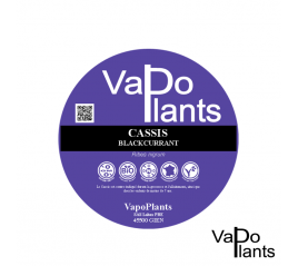 Cassis, feuille BiO (Ribes nigrum) boite 25g - Vapo Plants