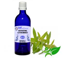 Verveine citronnée BiO, Hydrolat (Lippia citriodora) - Aroma Centre