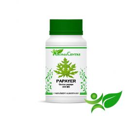 Papayer - Feuille, gélule (Carica papaya) 330mg - Aroma Centre