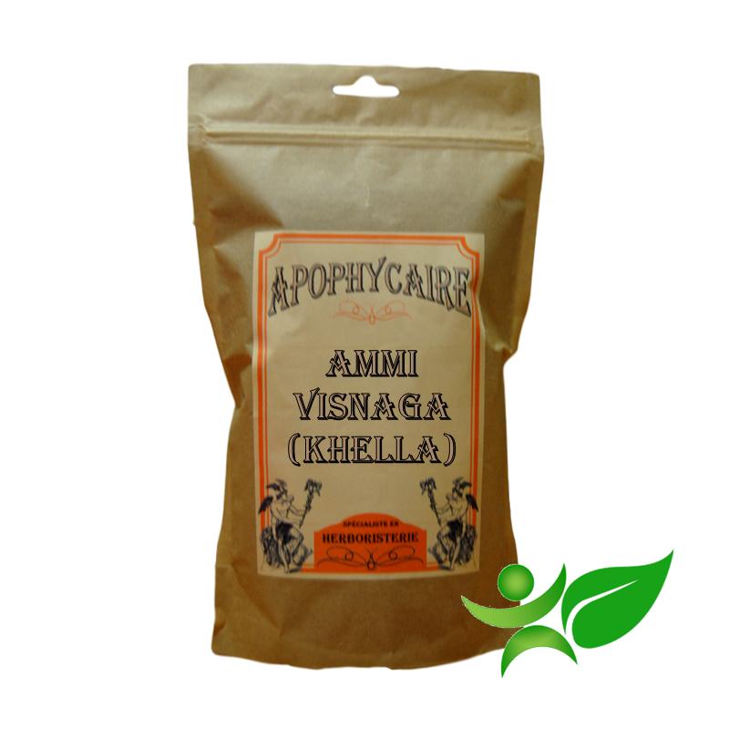 AMMI VISNAGA - KHELLA, Fruit (Ammi visnaga) - Apophycaire