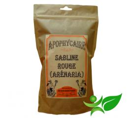 ARENARIA RUBRA - SABLINE ROUGE, Partie aérienne (Arenaria rubra) - Apophycaire