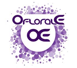 Leader Oflorale - Achillée millefeuille, Hydrolat (Achillea millefolium) - Oflorale ™