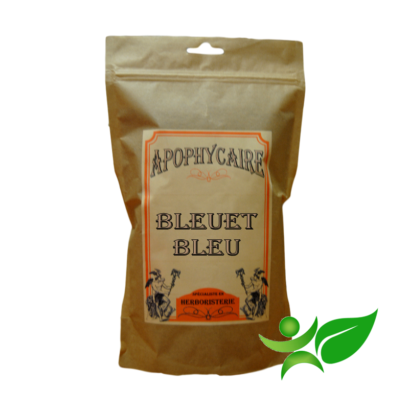 BLEUET BLEU, Fleur (Centaurea cyanus) - Apophycaire