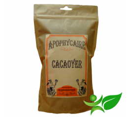 CACAOYER, Coque (Theobroma cacao) - Apophycaire