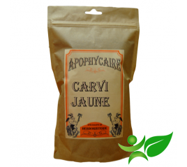 CARVI JAUNE, Fruit (Carum carvi) - Apophycaire