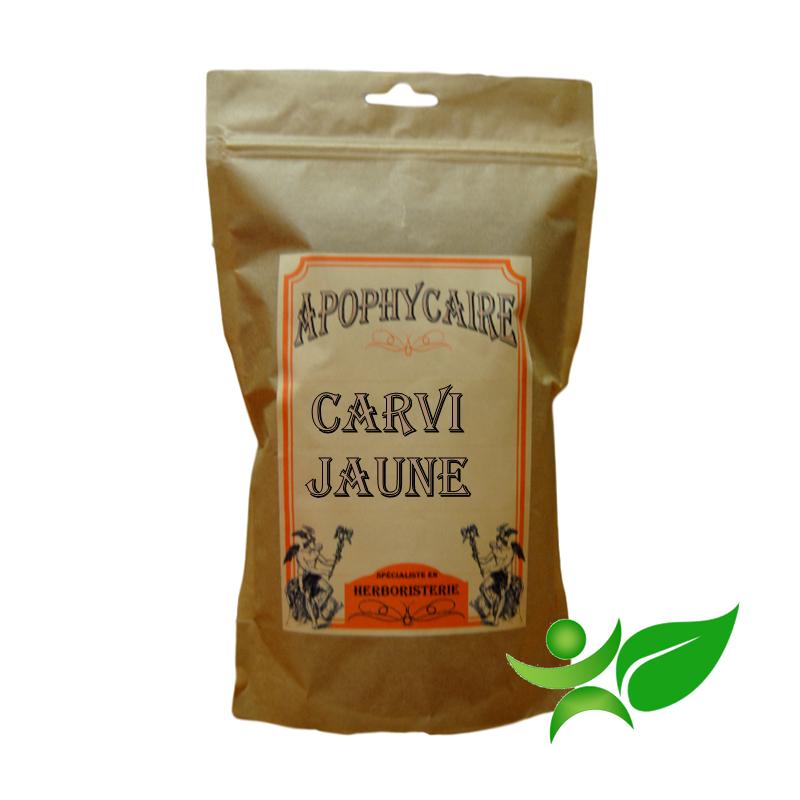 CARVI JAUNE, Fruit (Carum carvi) - Apophycaire