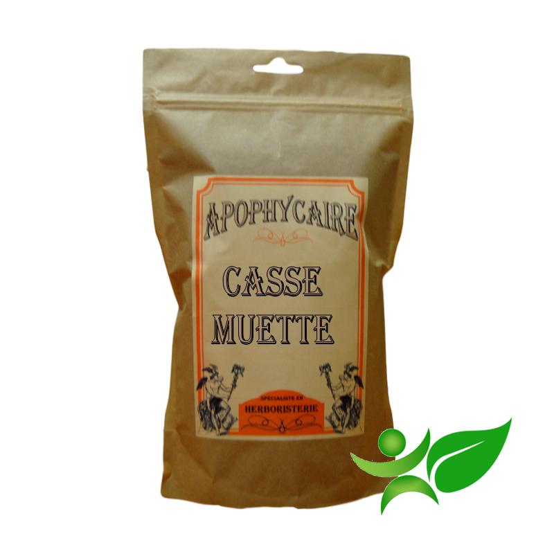 CASSE MUETTE, Fruit (Cassia fistula) - Apophycaire
